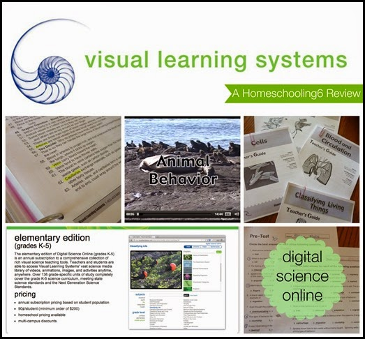 Visual Learning Systems Science