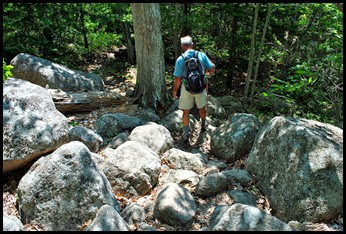 05 - Hemlock trail - a few more rocks to scramble