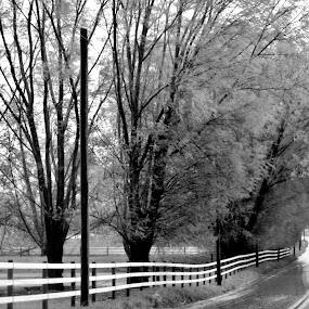 by Karen Jaffer - Black & White Landscapes