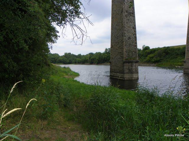 Loire à l'embouchure de l'Aix photo #381