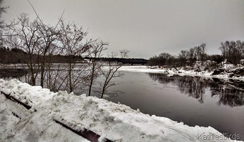 3. Androscoggin River looking NE on Bowdoin Isle 1-6-15 cell pic