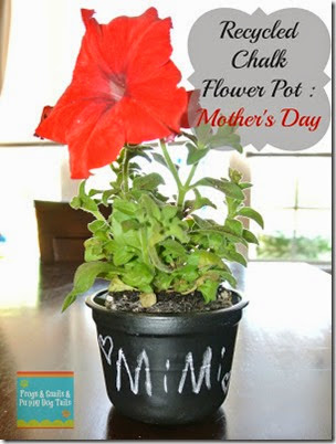 Mother's Day Gift Recycled Chalk Flower Pot from Frogs and Snails and Puppy Dog Tails