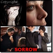 SORROW- 4 Pics 1 Word Answers 3 Letters
