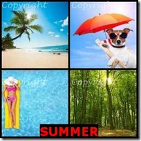 SUMMER- 4 Pics 1 Word Answers 3 Letters