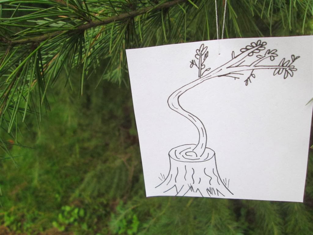 The Do-It-Yourself Mom: The Tree of Life: Seeking the Son This ...