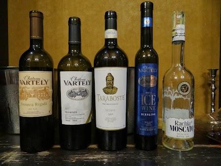 Drumul vinului -Basarabia: Degustare Chateau Vartely