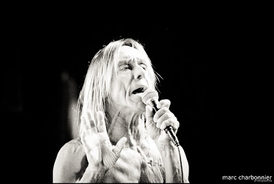 Iggy and the Stooges-14.jpg