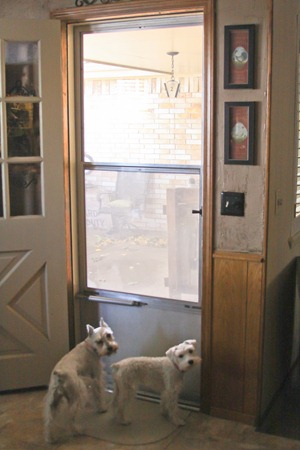 Tracy S Trinkets And Treasures A Storm Door With A Built