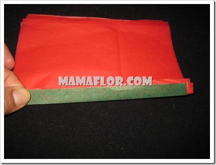 mamaflor-3081