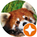 REDPANDA Channel