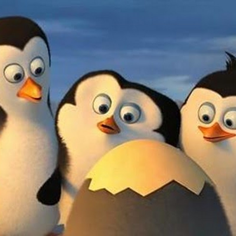 """Penguins of Madagascar"" Full Trailer Reveal – Spies on the Hatch!"