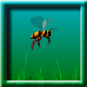 3D Animated Bee Flying LWP