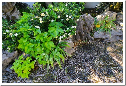 140711_LanSuChineseGarden_009