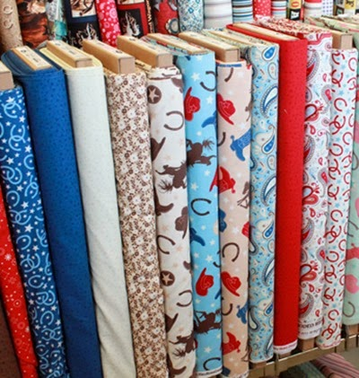 Rodeo Rider fabric red and blue