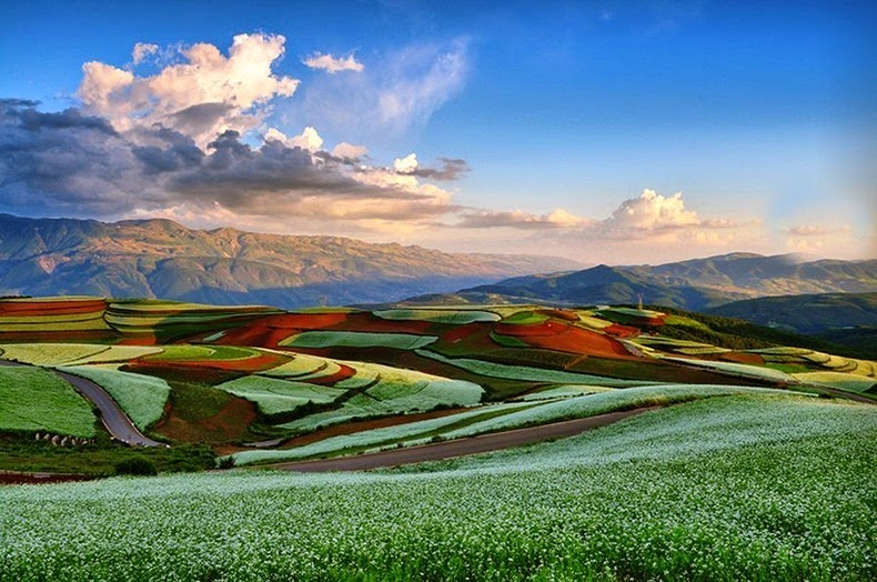 dongchuan-red-soil-1