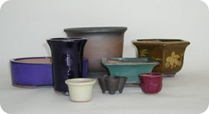 bonsai-pots-group
