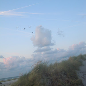 20140815_Holland-95.JPG