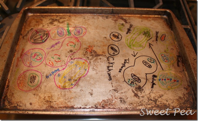 Make Your Own Nearly Free Shrinky Dinks Sweet Pea
