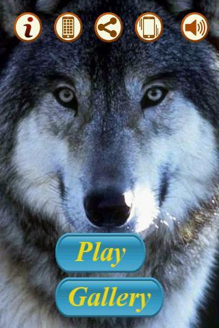 狼壁紙|玩解謎App免費|玩APPs