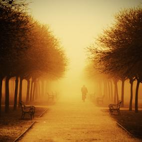 by Sanja Dedić - City,  Street & Park  City Parks ( silhouette,  )