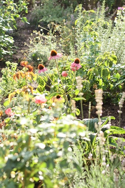 Otten Gartengestaltung, fräulein otten: wir sind im garten…., Design ideen