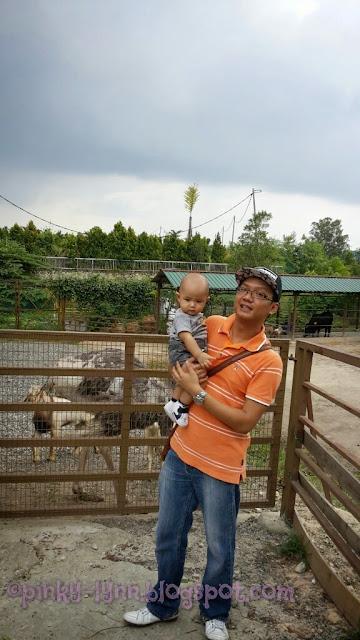 Bawa Anak Kenali Haiwan Secara Dekat di Farm In The City, Seri Kembangan