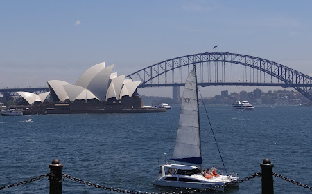 Atractii Australia: Opera si podul vazute din Gradinile Botanice Sydney