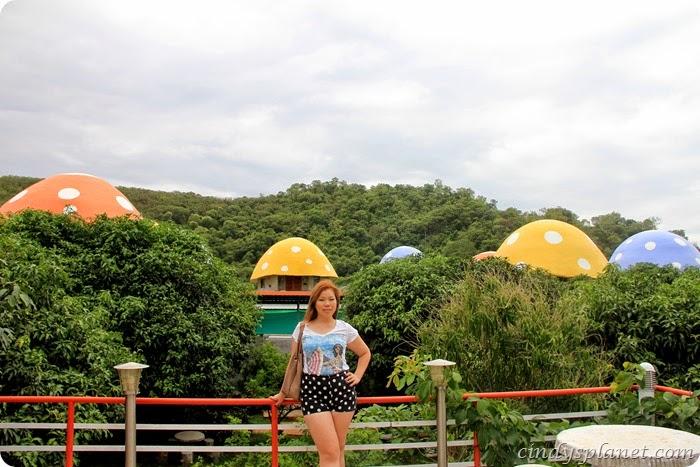 khao yai panorama farm (8)