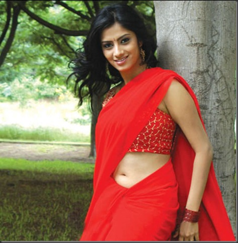 Sindhu Tolani in red saree