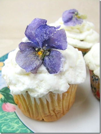 sugared violas