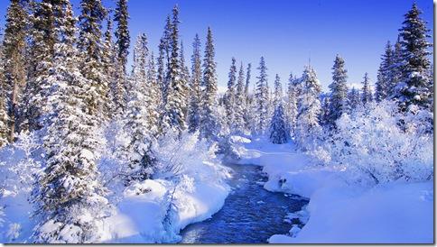 poze- imagini- iarna