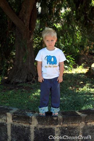 Classy Casual Boy's Pants (5)