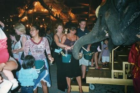 15. Elefant la Phuket Fantasea.jpg