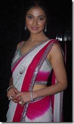 Divya_Khosla_hot_in_saree_pic