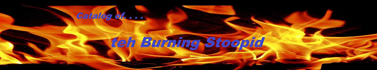 Catalog of Teh Burning Stoopid