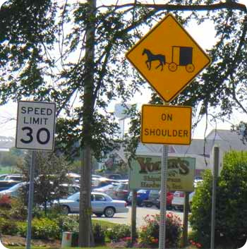 9-buggy-sign