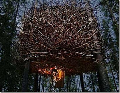 The-Birds-Nest-Inrednin-Gsgruppen-1