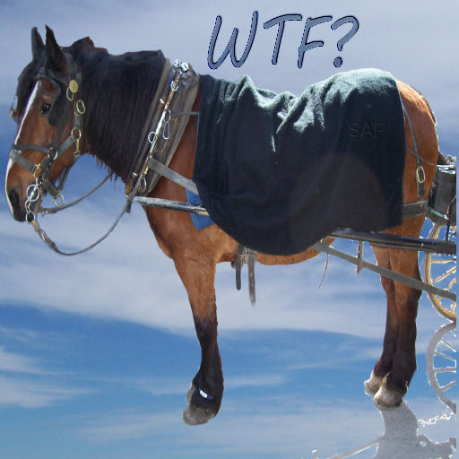a horse pulling a wagon [which is not in the photo] with the caption w.t.f. on a background of cirrus clouds in the sky