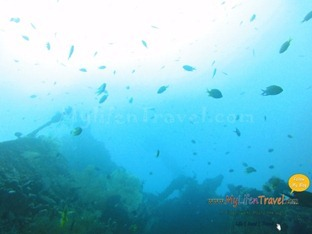Diving Amed Bali 32