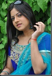 Telugu Actress Keerthi Chawla Gorgeous in Churidar Stills