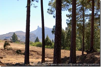 6215 Montaña Alsandara