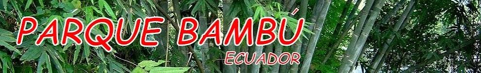Parque Bambú Ecuador