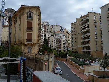 Obiective turistice Monaco: Cartier obisnuit