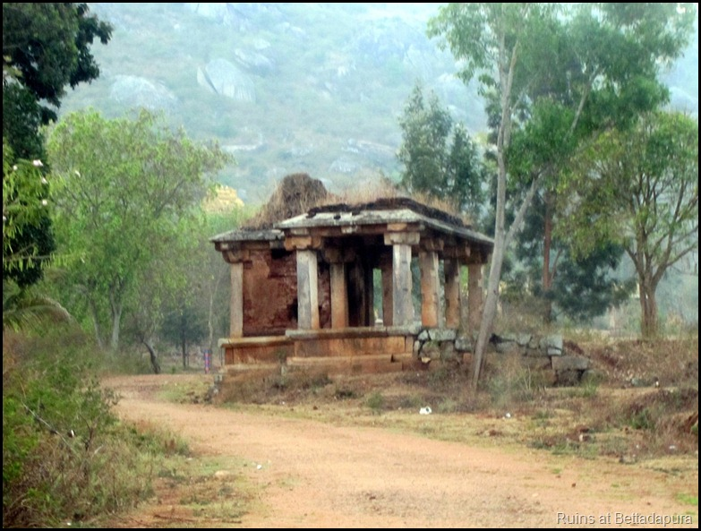 Ruins at Bettadapura