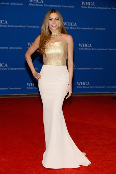 Sofia Vergara attends the 100th Annual White House Correspondents