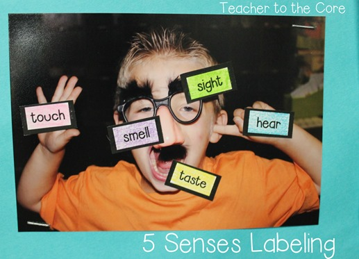 Label pictures to drive home the concept of 5 senses - great ideas from this blog