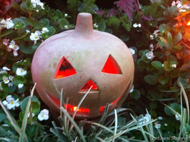 [pumpkin%255B1%255D.png]