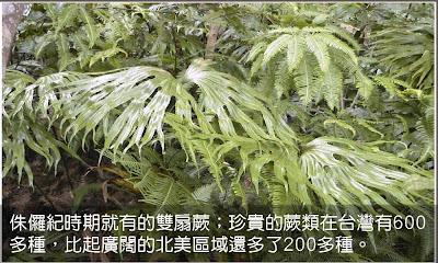 ECO102_banner.jpg
