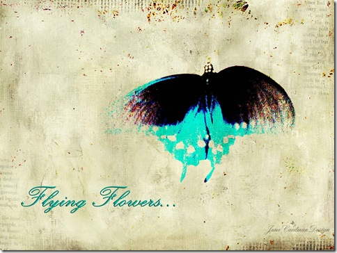 FlyingFlowers