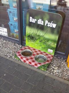 Bar dla psów